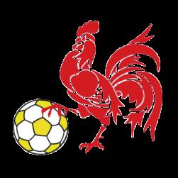 Division 3: ACFF League Logo