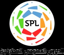 Pro League Play-offs League Logo