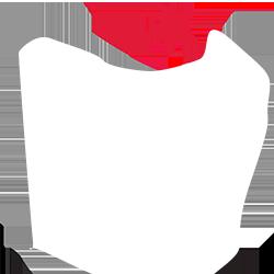 Süper Lig U21 League Logo