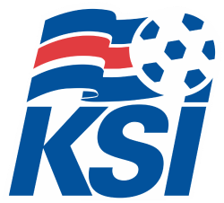 Reykjavik Youth Cup League Logo