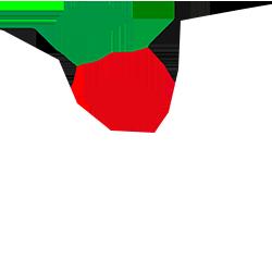 Lega Pro 2: Girone B League Logo