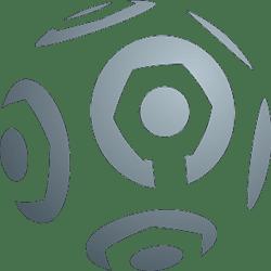 Ligue 1 Play-offs League Logo