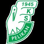 Pelikan Łowicz