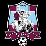 Sfîntul Gheorghe Team Logo
