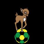 Magenta Team Logo