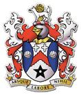 Stalybridge Celtic FC logo