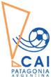 CAI Team Logo