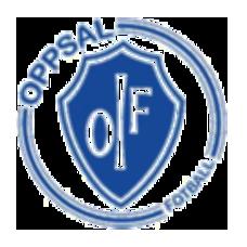Oppsal vs Elverum hometeam logo