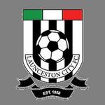 Launceston City logo