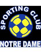 Notre Dame Team Logo