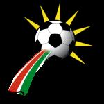 Colmar Team Logo