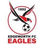 Edgeworth Eagles logo