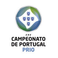 2. Division: Group B League Logo