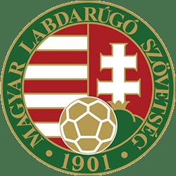 Hungarian Cup League Logo