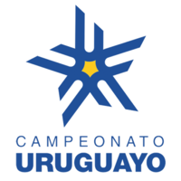 Primera Division League Logo