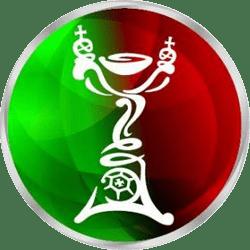 Taça De Portugal logo