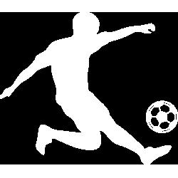 Ligi kuu Bara Logo