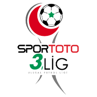 3. Lig: Group 2 logo