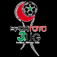 3. Lig: Group 3 League Logo