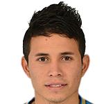 R. Torres Hoya