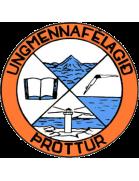 Thróttur Vogar shield