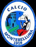 Montebelluna shield