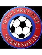 Pfeddersheim shield
