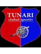 Tunari shield
