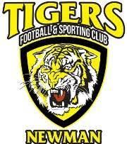 Azam Tigers Team Logo