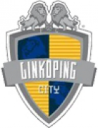Linköping City shield