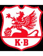 Karlberg shield