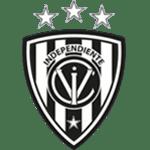 Independiente del Valle shield