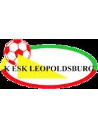 Leopoldsburg shield