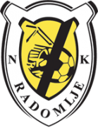 Radomlje shield