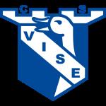 Vise shield