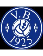 Vejgaard B shield