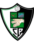 Valdivia shield