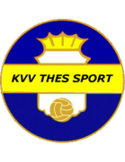 Thes Sport shield