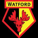 Watford W shield