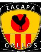 Deportivo Sanarate shield