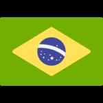 Brazil shield
