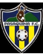 Pasaquina shield