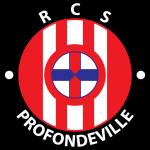 Profondeville shield