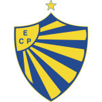 Pelotas shield