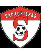 Sacachispas shield