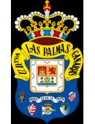 Las Zocas shield