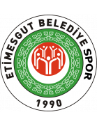 Etimesgut shield