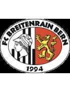 Breitenrain shield