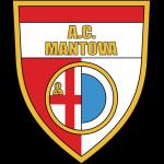 Mantova shield