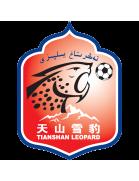 Xinjiang Tianshan shield